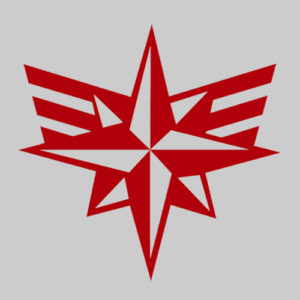 Roger Dodger Aviation logo, gray background