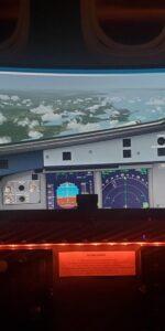 Extra wide display for flight simulator